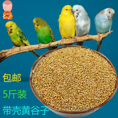 Brand new yellow millet