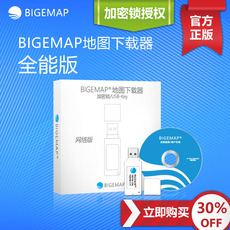 USB накопитель OTHER BIGEMAP USB-Key