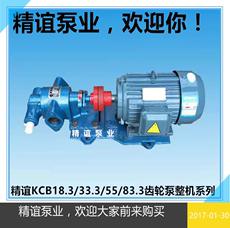 Насос высокого давления Jing Yi KCB18.3/33.3/55/83.3