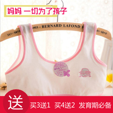 Stomacher OTHER 021 12 13