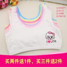 Stomacher OTHER 090 10 12