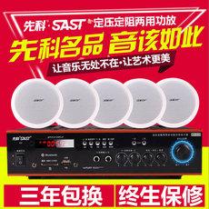 аудиотехника SAST WY18