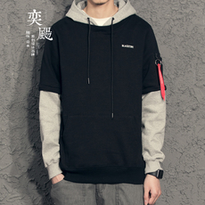 Full Zip Hooded Sweatshirt David dust