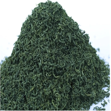 2019 New Tea Rizhao Green Tea Spring Tea Alpine Cloud and Foam Fragrant Bubble Resistant Bulk Pack 500g
