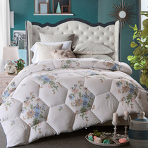 Mao Dong new mill was thick warm winter student fall winter by bedding quilt double sanded by core