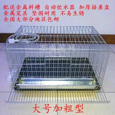Клетка для птиц 家用鹌鹑笼 大号加粗 自动滚蛋