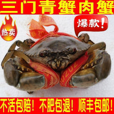 Голубой краб Three blue crab