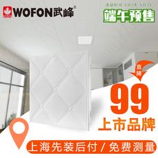 Крепежные пластины для потолка Wofon