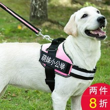 Big dog's chest and back with explosion-proof blunt traction rope K9 pet dog with dog rope golden hair large dog medium dog chain