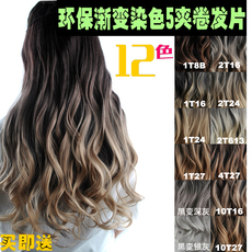 Шиньон Point faction. Ombre Hair Wavy