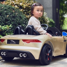 Children's electric car Dong Ma dmd/218