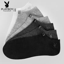 Playboy thin low cut sports four seasons ship short tube socks