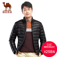 Men's down jacket Camel d6y240768 2016