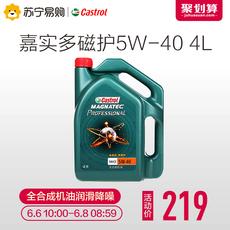 Castrol Professional 5W-40 SN 4L