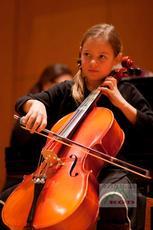 Аксессуары для скрипки Cello Phant