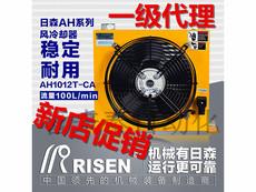 Пресс гидравлический Himori RISEN AJ/AH1012T-CA