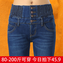 Autumn elastic waist denim plus size straight leg fat mm pencil pants