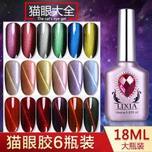 Lixia Baita cat's eye oil gel phototherapy blue jade cat's eye gel cover special magnet for armored oil gel manicure shop