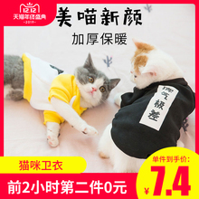 Kitten clothes in autumn and winter, warm kittens and kittens, funny pets in summer and thin autumn