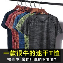 Sports t-shirt men's short sleeve comfortable ice silk slippery material fat men 2019 new trend handsome body training mesh quick drying
