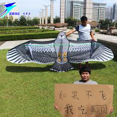 Shengenhong games bird of paradise