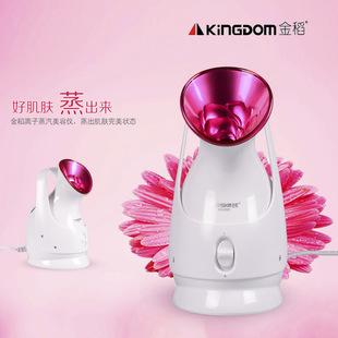 金稻蒸臉器正品kd-2331美容噴霧機納米手提家用噴霧器美容儀批發