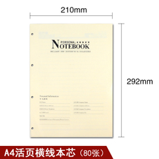 notebook Platinum beauty 80 A4 A4