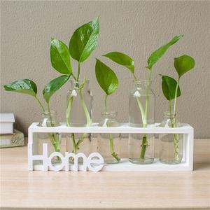 创意水培花瓶透明玻璃小清新个性摆件客厅桌面装饰品绿萝植物容器花瓶