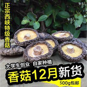 冬瓜玉米香菇排骨汤_珍珠丸子冬瓜排骨汤芦荀虾仁香菇玉米排骨汤红
